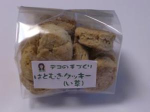Hatomugiigusa